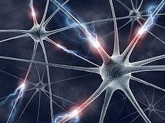 Día Mundial de la Esclerosis Lateral Amiotrófica (ELA)